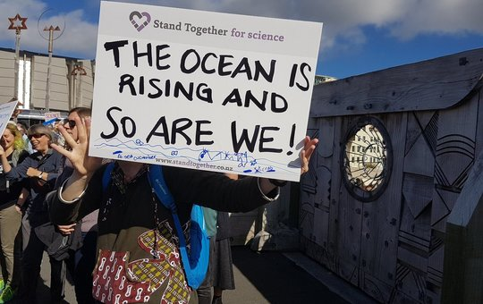The Youth For Climate Change Protests