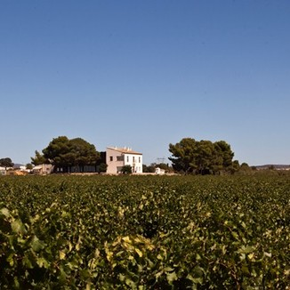 Hispano Suizas Winemaker Pablo Ossorio