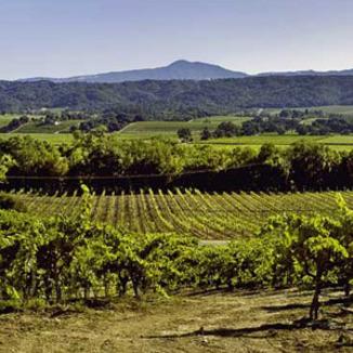 Hughes Family Vineyards Winemaker Rolando Herrera