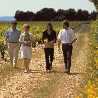 Domaine du Vieux Lazaret Winemaker