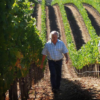 Roblar Winemaker Bryan Davison