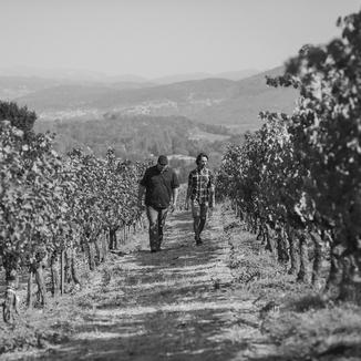 Chamboulé Winemaker Matt Taylor