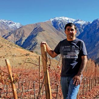 De Martino Winemaker Marcelo Retamal