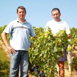 Domaine Fichet Winemaker Pierre-Yves & Olivier Fichet