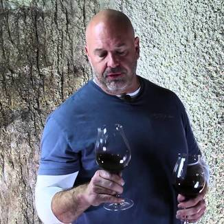 Elyse Winery Winemaker Mike Trotta