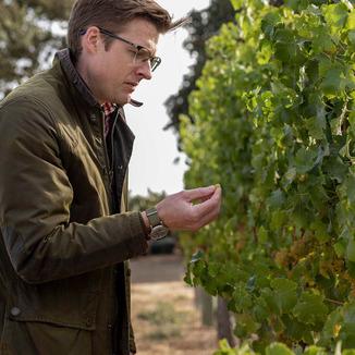 Apsara Cellars Winemaker Robin Akhurst