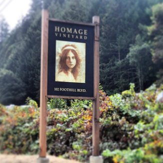 Homage Vineyard