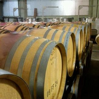 Von Holt Wines