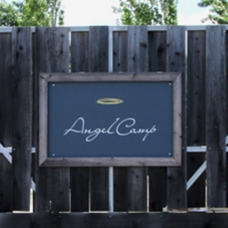 Angel Camp Vineyard