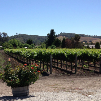 Piedra Creek Winery