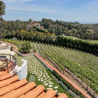 Dolin Malibu Estate Vineyards