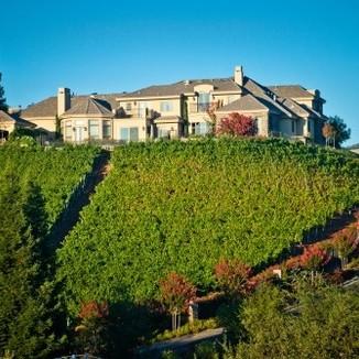 Glennhawk Vineyards