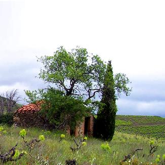 Domaine Cabirau