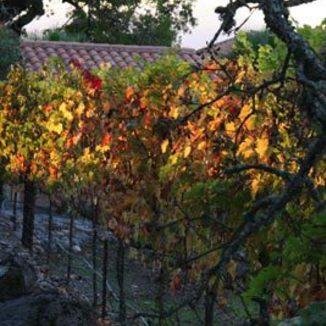 Crauford Wine Company