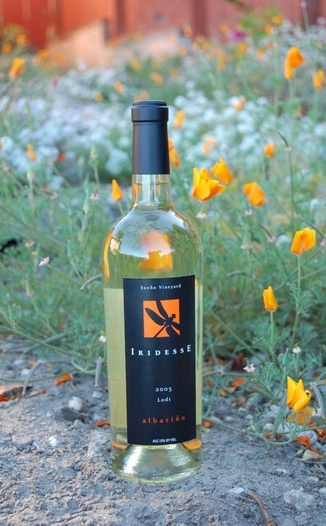 Iridesse 2005 Albariño, Lodi 750ml Wine Bottle