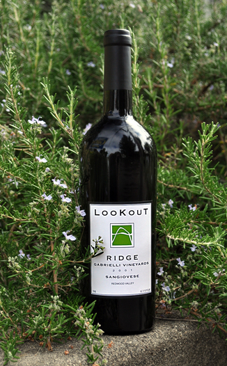 Lookout Ridge 2001 Gabrielli Vineyard Sangiovese 750ml Wine Bottle