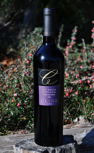 Cline Cellars 2008 Big Break Zinfandel 750ml Wine Bottle