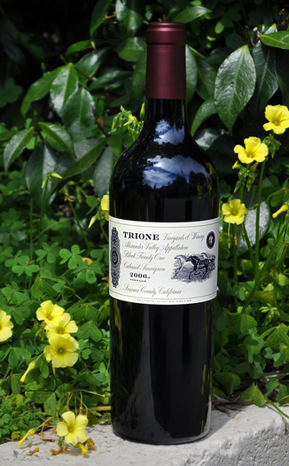 Trione Vineyards & Winery 2006 Alexander Valley Cab Sauv Block 21 750ml Wine Bottle