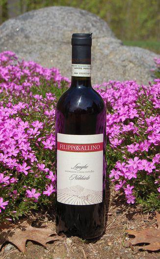 Filippo Gallino 2009 Langhe DOC Nebbiolo 750ml Wine Bottle