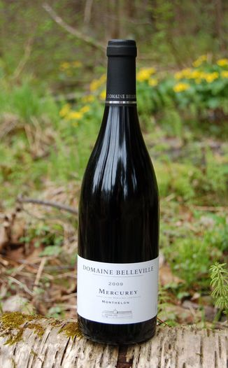 Domaine Christian Belleville 2009 'Monthelon' Mercurey AOC 750ml Wine Bottle