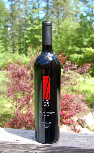 B Cellars 2006 Blend 25 750ml Wine Bottle