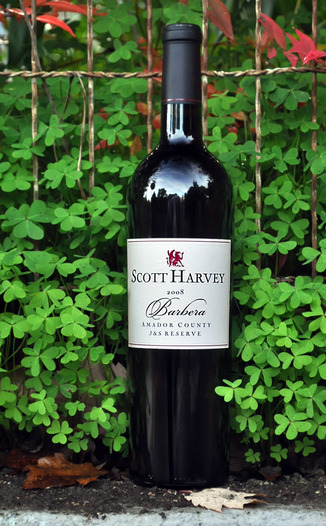 Scott Harvey Wines 2008 J&S Reserve Barbera 750ml Wine Bottle