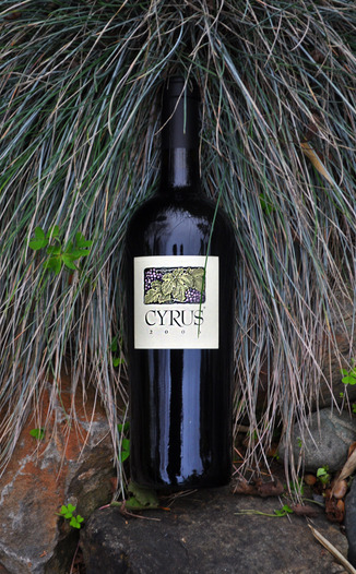 Alexander Valley Vineyards 2006 Cyrus 750ml Wine Bottle