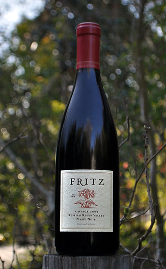 Fritz Underground Winery 2009 Russian River Valley Pinot Noir 750ml Wine Bottle