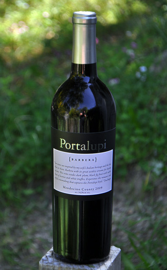 Portalupi Wine 2009 Mendocino County Barbera 750ml Wine Bottle