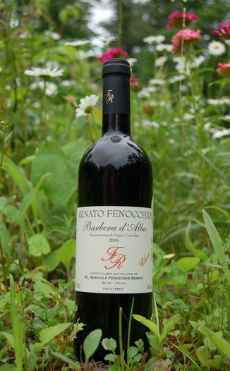 "Renato Fenocchio 2006 Barbera d'Alba DOC ""Elena"" 750ml Wine Bottle"