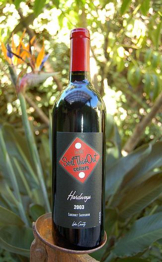 Sort This Out Cellars 2003 Hardways 750ml Wine Bottle