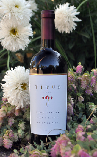 Titus Vineyards 2008 Cabernet Sauvignon 750ml Wine Bottle