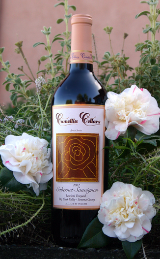 Camellia Cellars 2002 Cabernet Sauvignon 750ml Wine Bottle