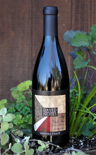 David Noyes Wines 2010 Sonoma Coast Pinot Noir 750ml Wine Bottle