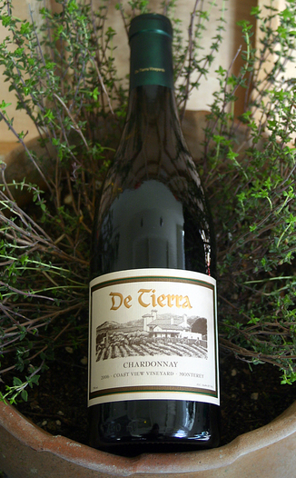 DeTierra Vineyards 2006 Coast View Vineyard Chardonnay 750ml Wine Bottle