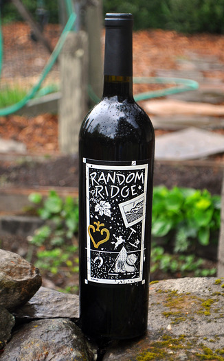 Random Ridge 2008 Cabernet Sauvignon 750ml Wine Bottle