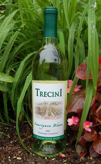 Trecini Cellars 2007 Sauvignon Blanc 750ml Wine Bottle