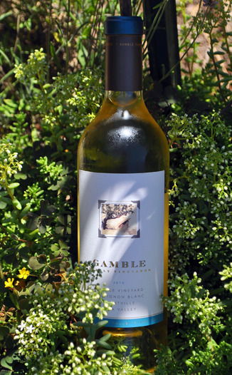 Gamble Family Vineyards 2010 Sauvignon Blanc 750ml Wine Bottle