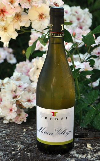 Trénel Fils 2011 Macon Villages Chardonnay 750ml Wine Bottle