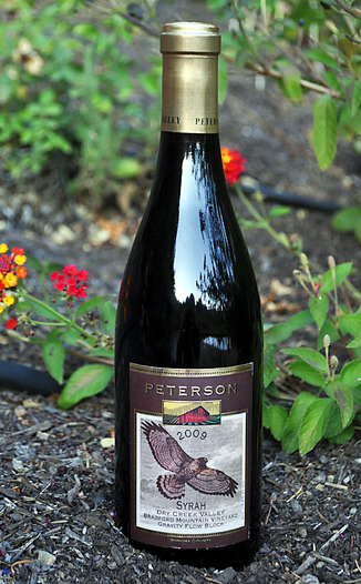 Peterson Winery 2009 Bradford Mountain Dry Creek Valley Syrah 750ml Wine Bottle