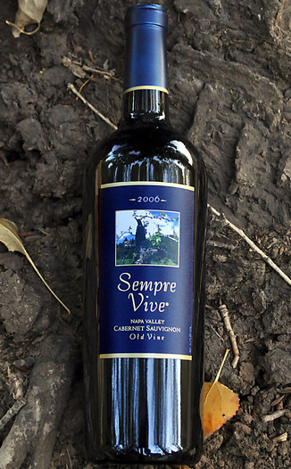 Romeo Vineyards 2006 Sempre Vive Napa Old Vine Cabernet Sauvignon 750ml Wine Bottle