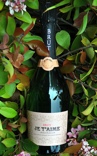 Je T'aime NV Methode Traditionnelle Brut Sparkling Wine 750ml Wine Bottle