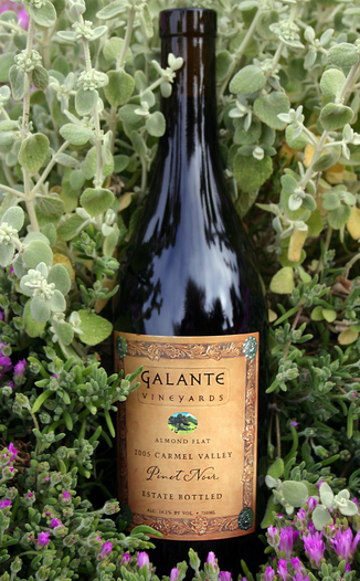 Galante Vineyards 2005 Almond Flat Pinot Noir 750ml Wine Bottle