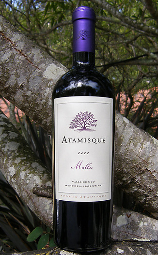 Bodega Atamisque 2011 Valle de Uco Malbec 750ml Wine Bottle