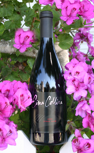 Cima Collina  2006 Pinot Noir - Monterey 750ml Wine Bottle