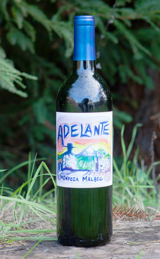Adelante 2013 Malbec Mendoza 750ml Wine Bottle