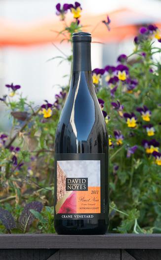 David Noyes Wines 2011 Pinot Noir Sonoma Coast 750ml Wine Bottle