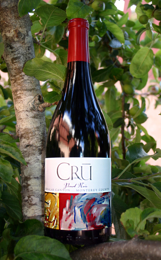 Cru Wines 2006 Pinot Noir, Chualar Canyon 750ml Wine Bottle