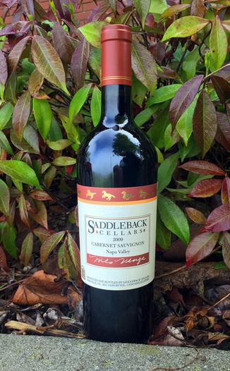 Saddleback Cellars 2009 Cabernet Sauvignon 750ml Wine Bottle