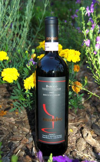 Reverdito Michele 2001 Barolo Bricci Cogni DOCG 750ml Wine Bottle